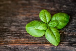basil leaves - home remedies for stomach pain