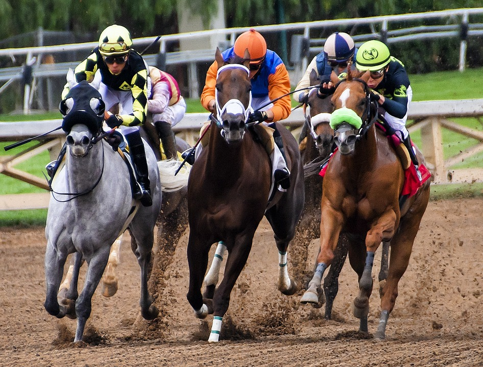 How to Calculate Double Chance Odds in Horse Racing