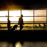 Business Travel Guide to the USA