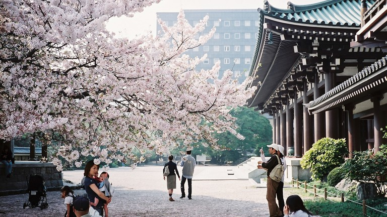 Famous Cultural Destinations in Japan