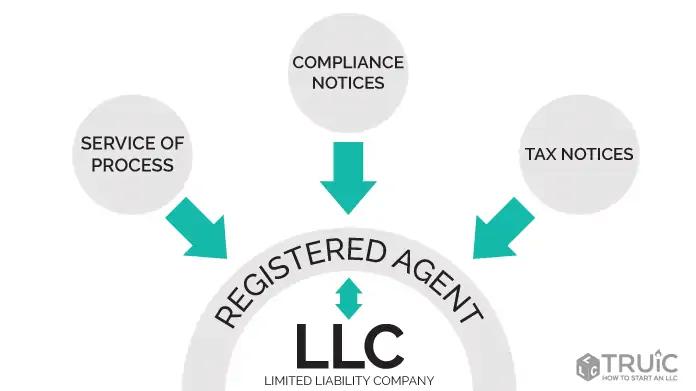 Can I set up an LLC myself in Georgia?