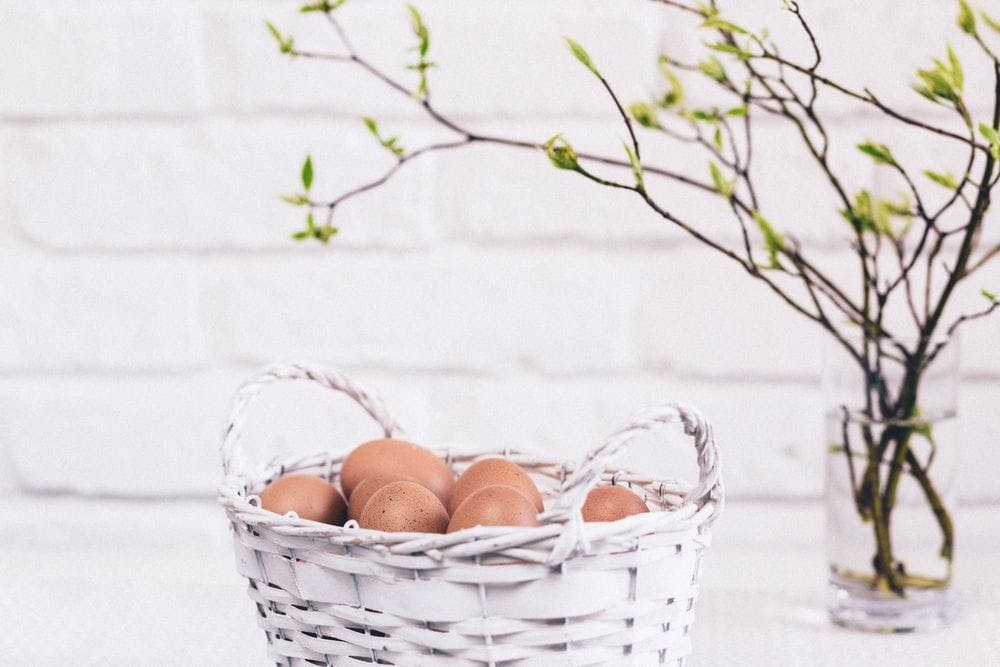 What You Need To Know About Steamer Baskets And Why You Should Get One