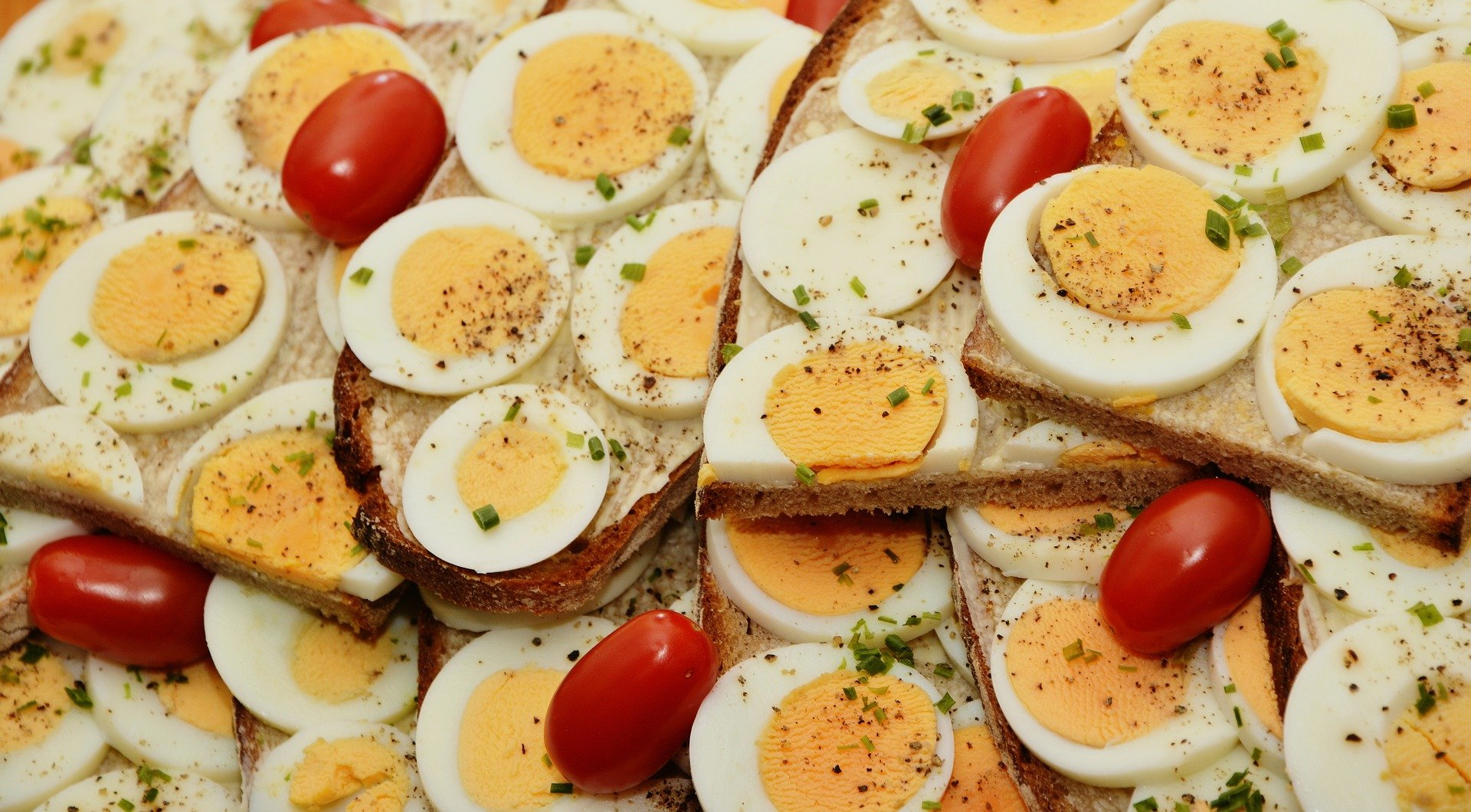 Protein Rich Foodfor Weight Loss and Muscle Building